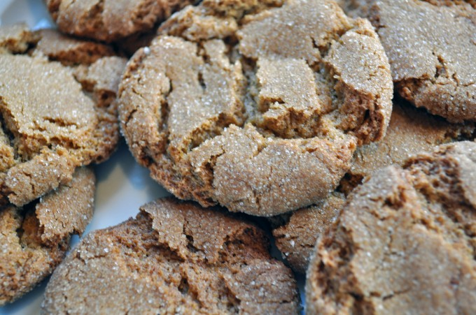 My All Time Favorite Ginger Cookies